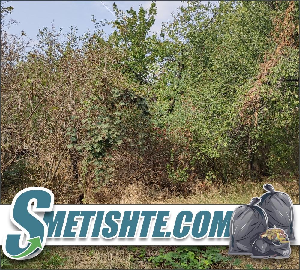 Почистване на парцел рязане на храсти и дървета