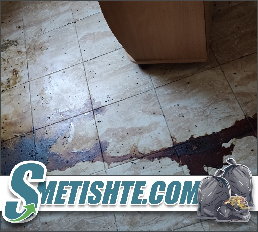 Почистване на апартамент с труп и дезинфекция